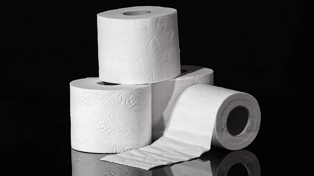 EVERYTHING YOU WANTED TO KNOW ABOUT TOILET PAPER … AND MORE!
